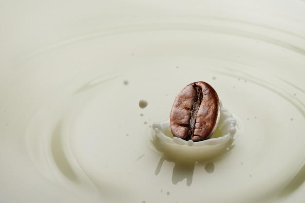 Coffee bean splash