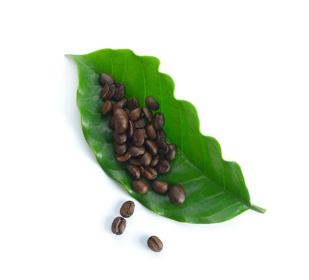 白い表面に分離されたコーヒーの葉を持つコーヒー豆
