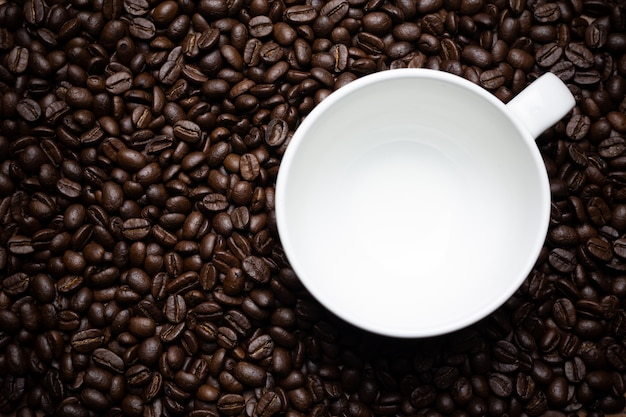 Coffee beans and coffee cup.