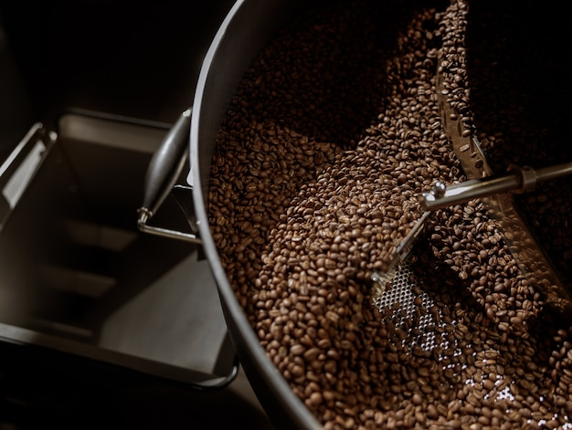 Coffee beans in cooling tray of coffee roasting machine