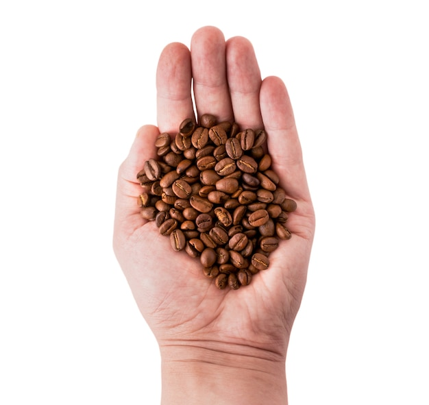 Coffee beans in the hand of a man on white