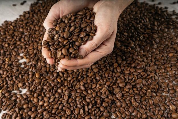 Кофейные зерна в руках. руки возьмите горсть кофейных зерен из мешковины.
