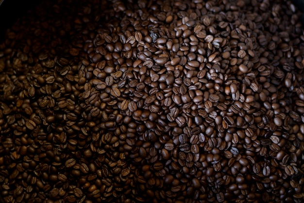Coffee beans is roasting in roaster machine in coffee shop.