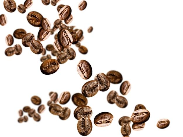 흰색 바탕에 커피 콩