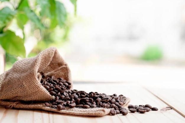 朝は木の床の袋からコーヒー豆が注がれます。