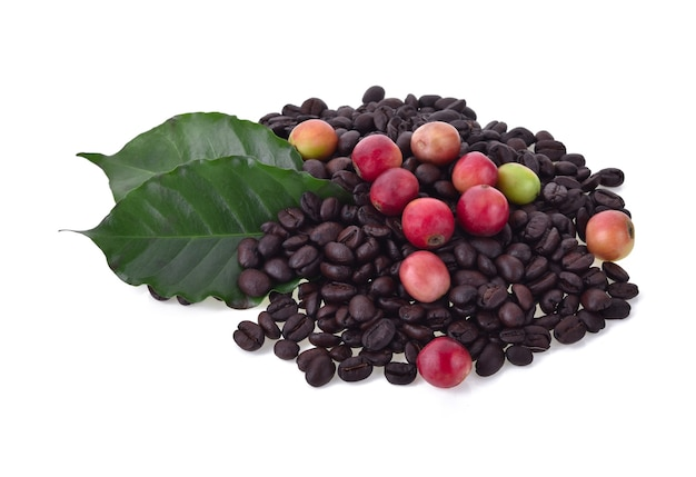 Coffee beans and ripe coffee isolated.