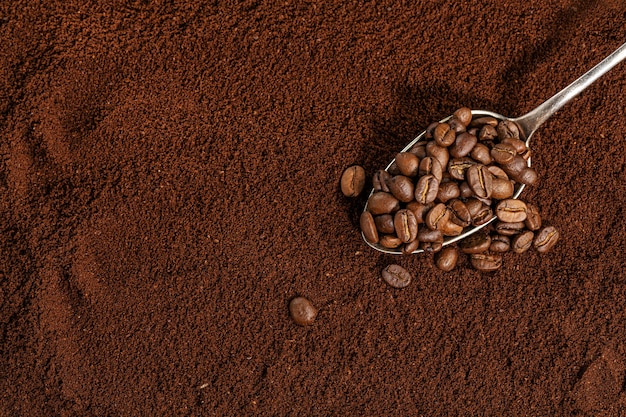 Coffee beans on spoon on ground coffee background. closeup.