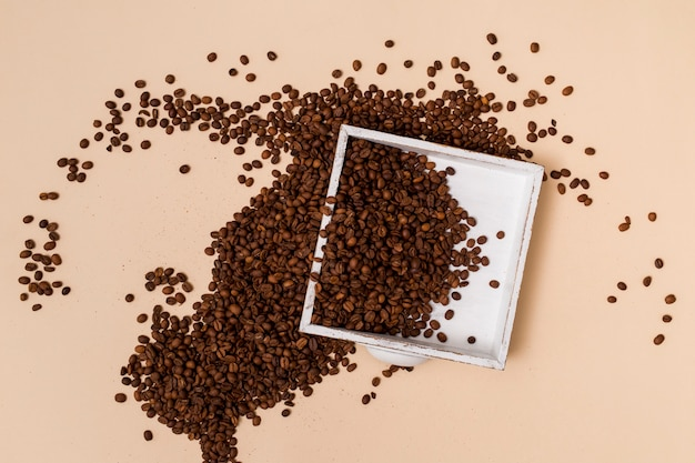 Coffee beans and a tray