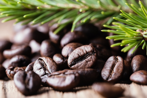Coffee beans with fir-tree branch on wooden surface close-up.