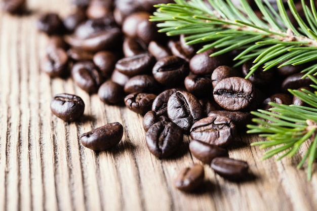 Coffee beans with fir-tree branch on wooden surface.