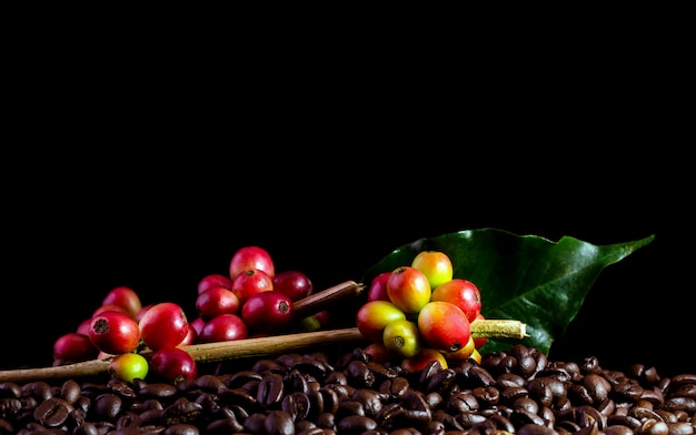 Coffee beans on wood