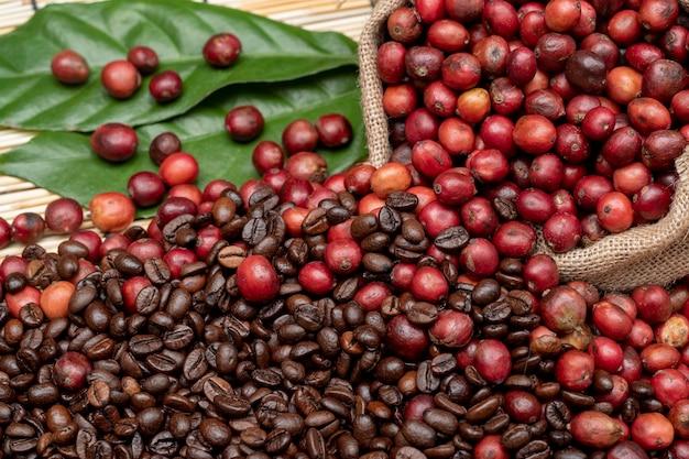 커피 체리와 커피 콩