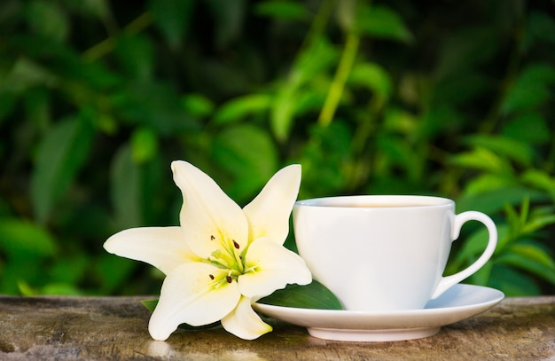Coffee cup and white lily on natural green background.