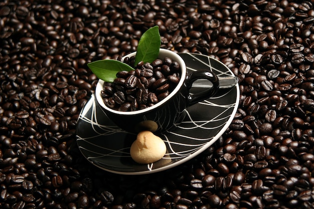 Coffee in the cup with coffee beans around