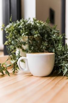 Кофейная чашка с горшечным растением на деревянной поверхности