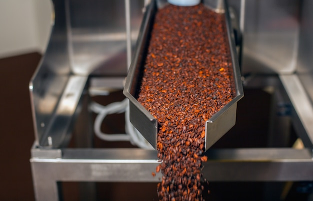 Coffee industry, close up of coffee production.