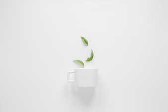 Coffee leaves and white cup over white background