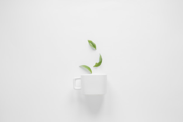 Листья кофе и белая чашка на белом фоне