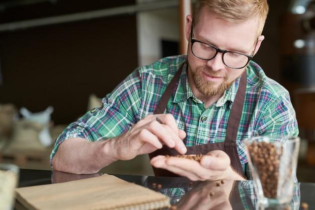 Coffee roaster examining beans