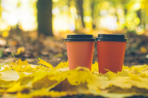 Coffee takeaway cups in an autumn foliage. outdoor coffee.