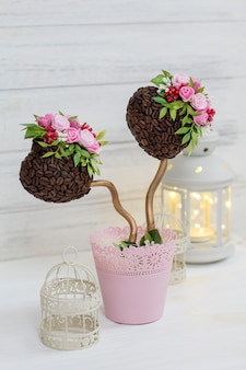 A coffee tree. ornamental tree. topiary. wedding decoration and lantern
