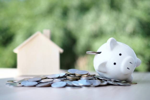 Coin with piggy bank, white pig and house model