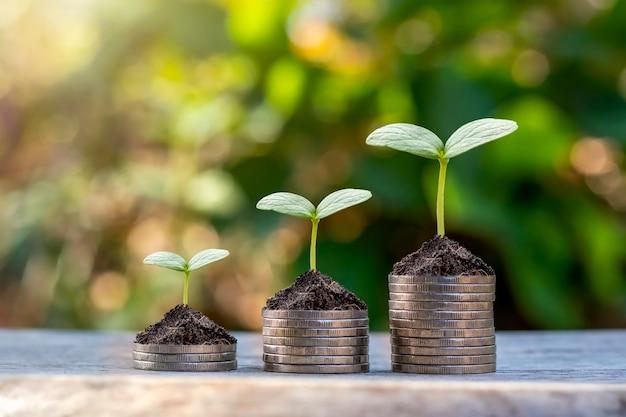 コインと植物は、金融と銀行のためにコインの山の上で育ちます。お金を節約し、財政を増やすという考え。 Premium写真