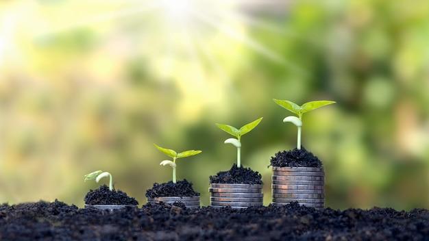 コインと植物は、金融と銀行のためにコインの山の上で育ちます。