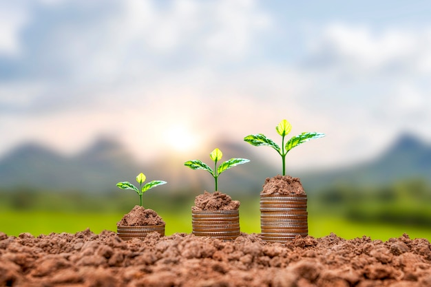 Монеты и растения, посаженные на груды монет в земле, идеи для экономии денег и увеличения финансов.