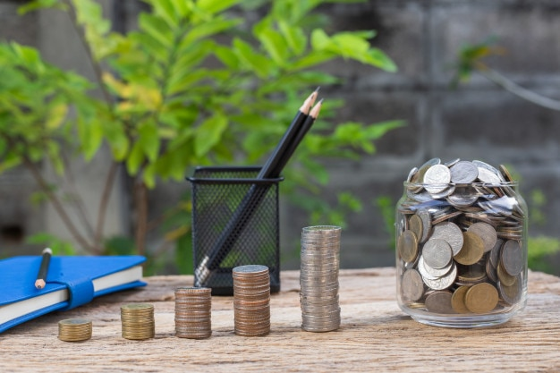 Coins are growing in the future.student loan for concept fund investment in education