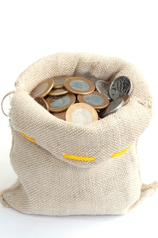 Coins in bag