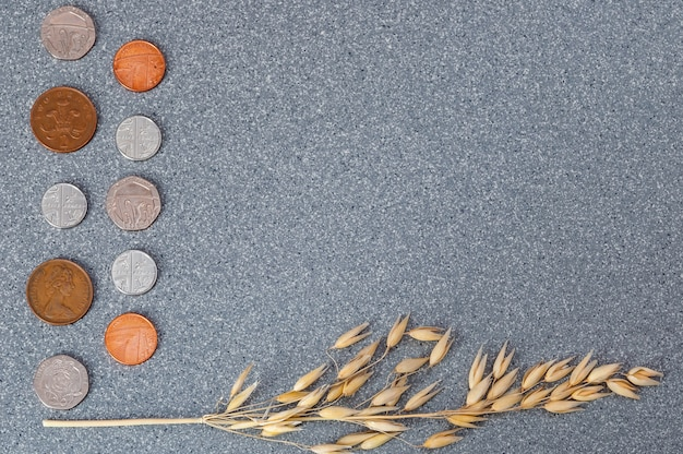 Coins of the great britain and an ear of barley on a background of gray granite.