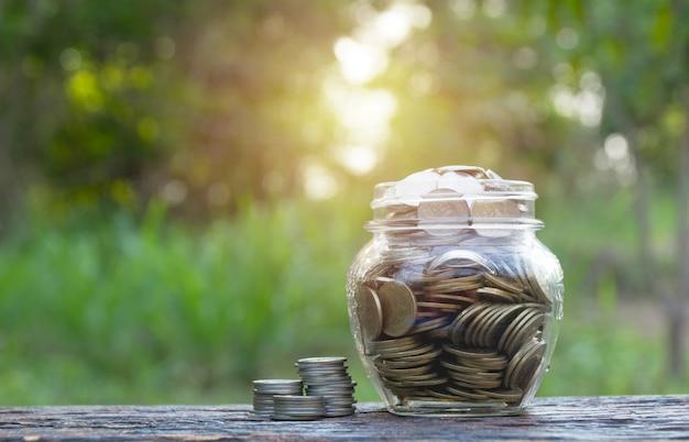 Монеты в банке на фоне природы, концепция финансов бизнес, экономя инвестиции.