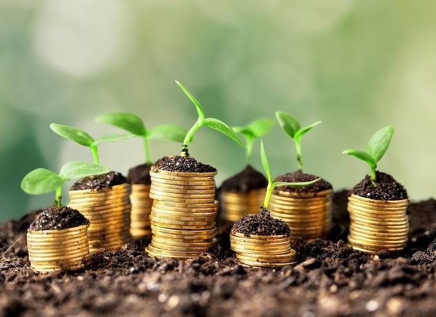 Монеты в почве с молодыми растениями на размытом фоне