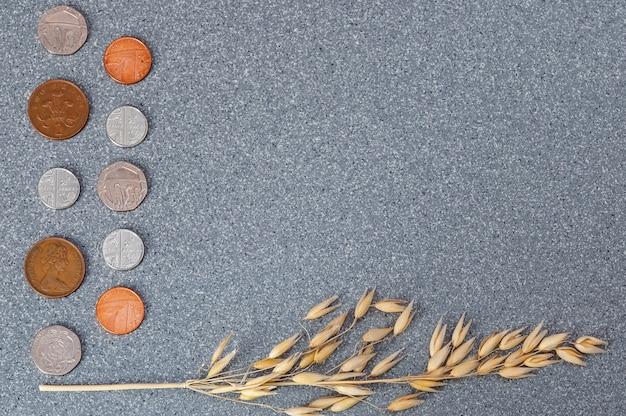 イギリスの硬貨および灰色の花こう岩の背景に大麦の穂。