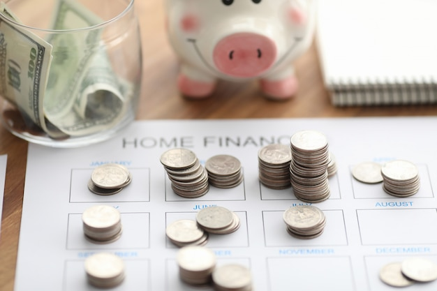 Coins and piggy bank lie on home finance form