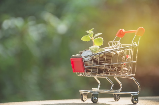 Coins in shopping cart. concept finance business and shopping investment.