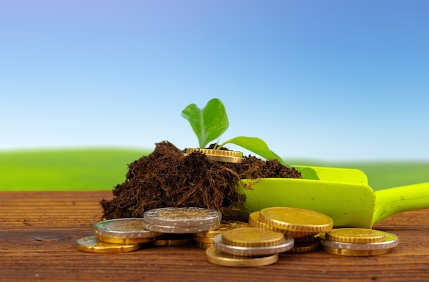 Coins stack of money and growing plant financial concept