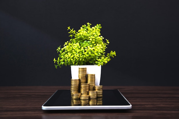 Coins stacks and little tree on tablet
