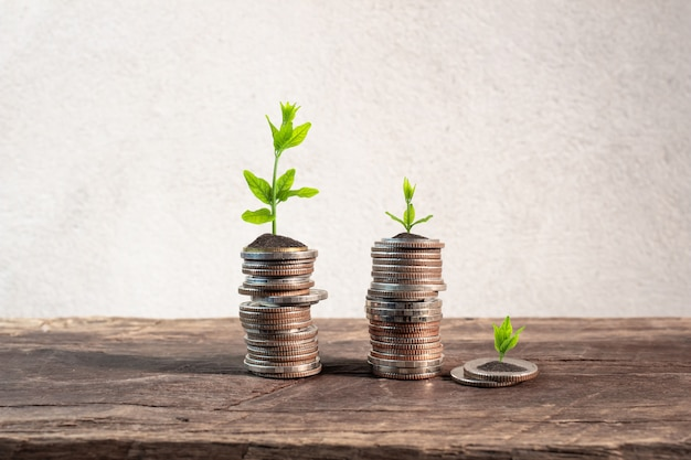 Coins with young plant on table with backdrop cement wall.