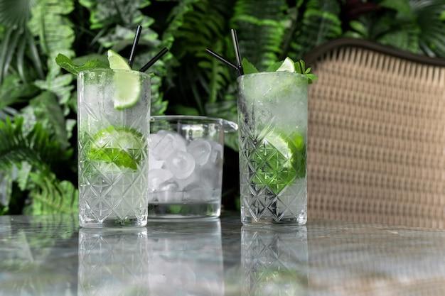 Коктейль джин тоник или мохито в стакане с мятой, льдом, лаймом на фоне тропических листьев.
