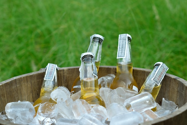 Cold bottles of beer in wooden bucket with ice