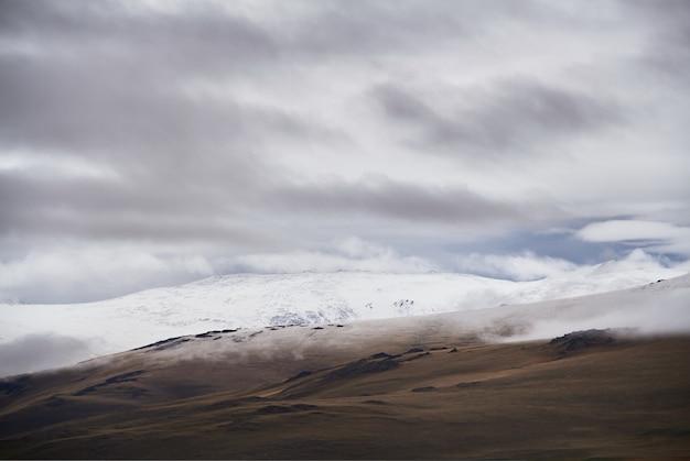 Холодная пасмурная погода в степной зоне. плато укок алтая. сказочные холодные пейзажи. кто-нибудь вокруг