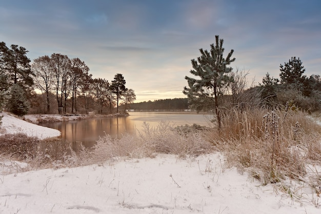 湖の寒い雪の朝。晩秋。秋の湖畔の木々