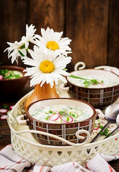 Cold soup with fresh cucumbers, radishes with yoghurt in bowl on wooden table