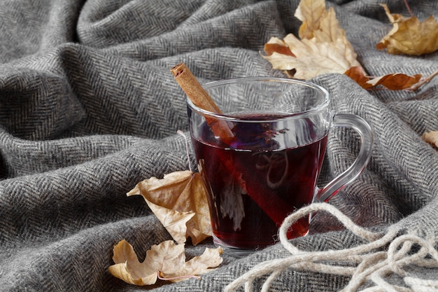 Cold time hot alcohol drink, mulled wine