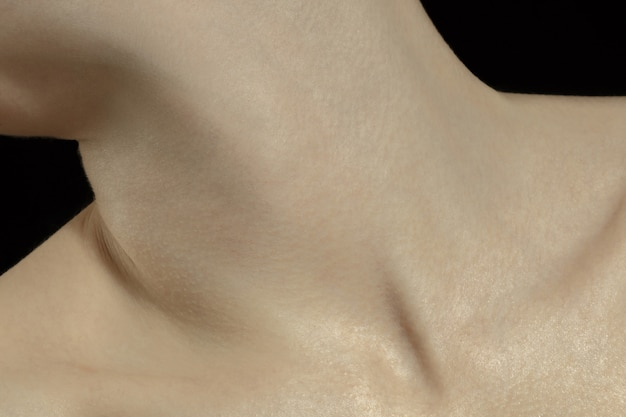 Collarbones. detailed texture of human skin. close up shot of young caucasian female body.