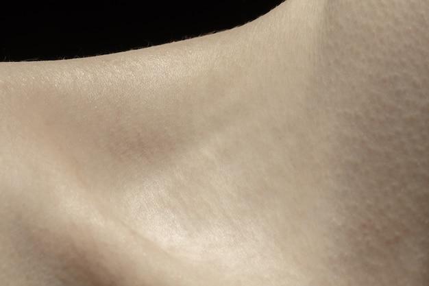 鎖骨。人間の肌の詳細な質感。若い白人女性の体のクローズアップショット。