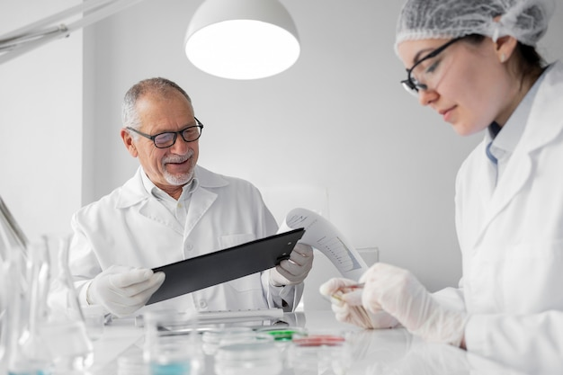 Коллеги в лаборатории делают эксперименты