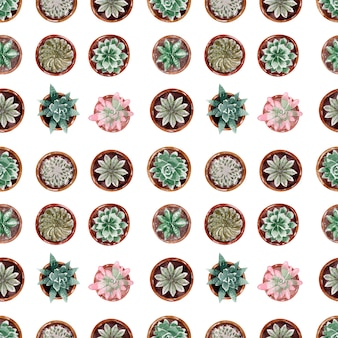 Collection of cacti in pots seamless pattern